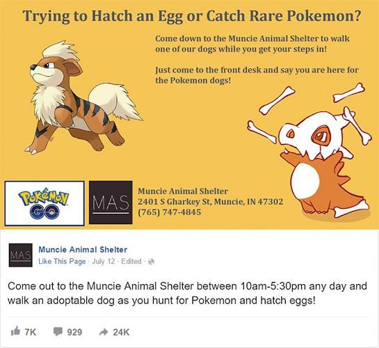 pokemon-go-animal-shelter3